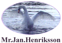 Mr Jan Henriksson